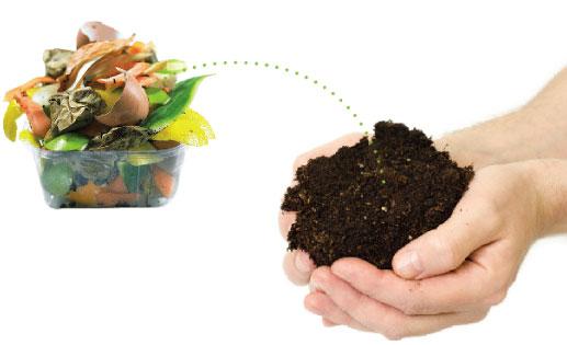 """""""DESENTUPIDORA CURITIBA"""", 5 resíduos que podem ser compostados e você não sabia!'"""
